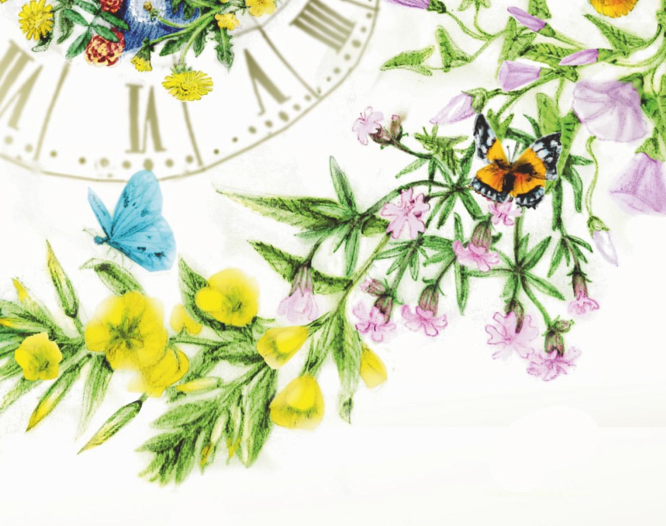 horloge-de-linne-detail